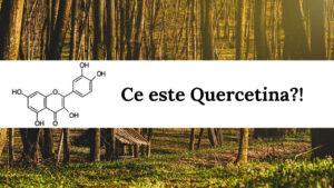 Află ce este Quercetina
